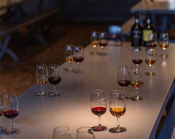 degustação vinho do porto portugal