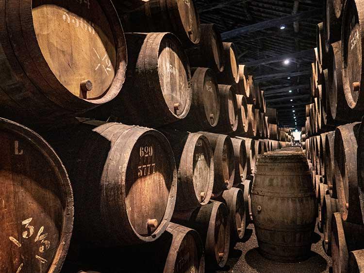 cave vinho do porto