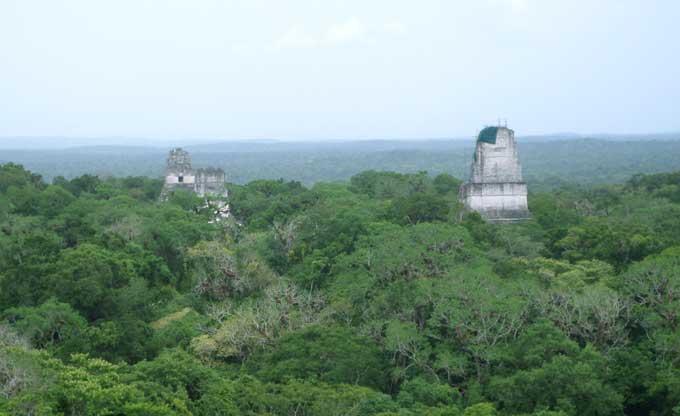 templos piramides maias de Tikal