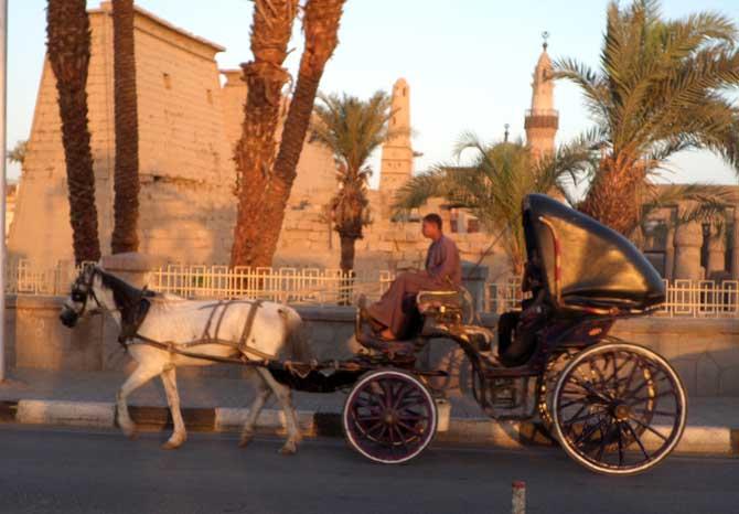 Charrete em Luxor