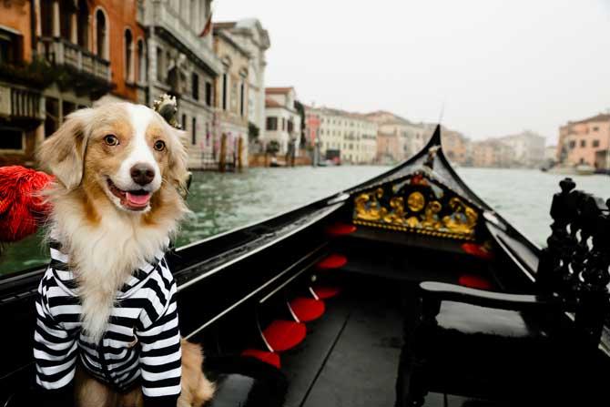 dicas gondola veneza