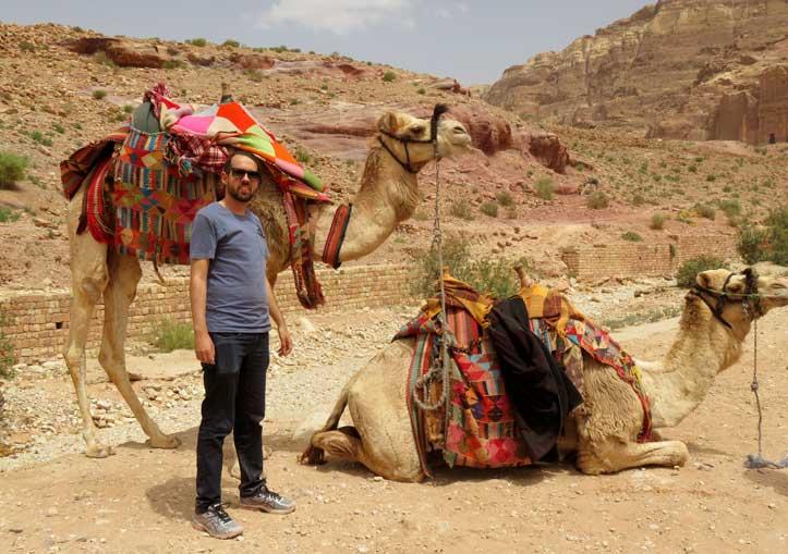 camelos jordania