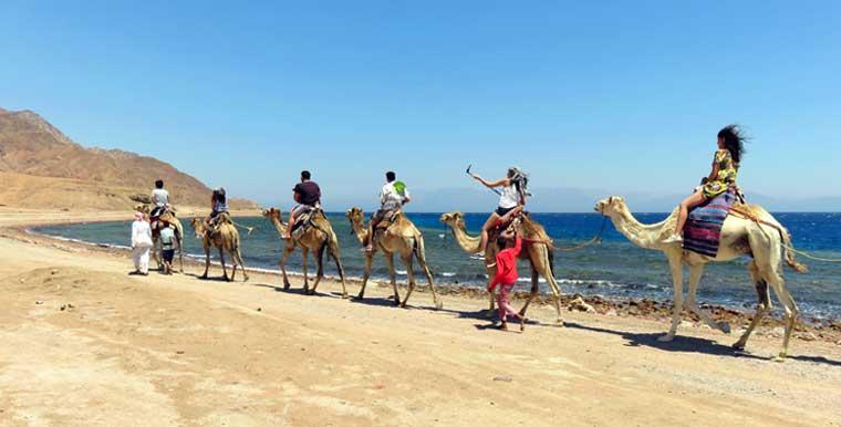 passeio de camelo egito deserto