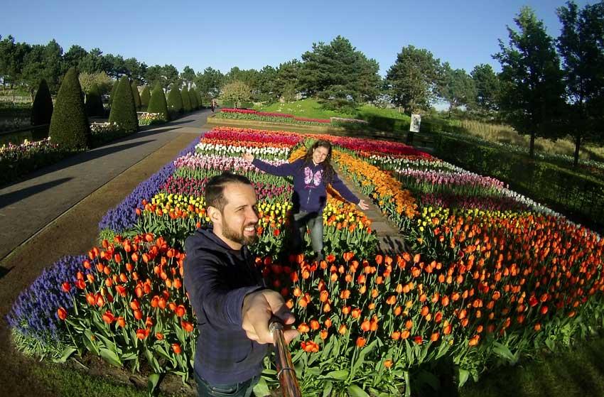 Jardins campos de tulipas amsterdam