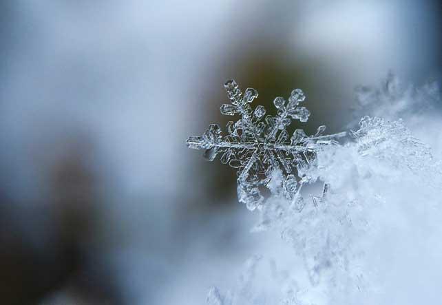 floco de neve