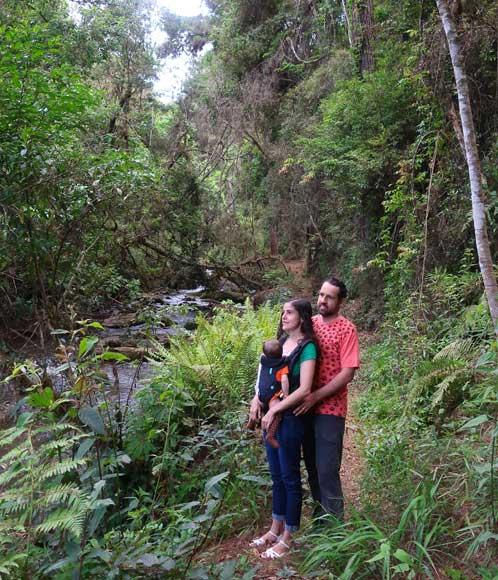trilhas monte verde